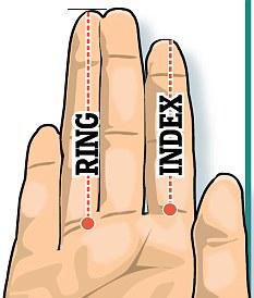 7 - طول الإصبع يدل على طول القضيب 2